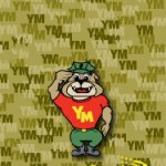 Young Marines Basic Guidebook